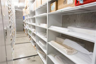 Fossils stored on mobilized shelving at California Academy of Sciences