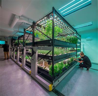 Save Space hydroponic indoor growing urban farm.jpg